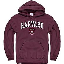 64216848 Campus Colors NCAA Adult Arch & Logo Gameday Hooded Sweatshirt -  Multiple Teams, ...
